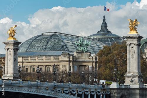 Spoed Fotobehang Delhi Alexander III bridge and the Grand Palace in Paris