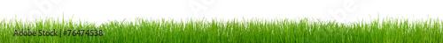 Photo sur Aluminium Herbe Green grass on white background