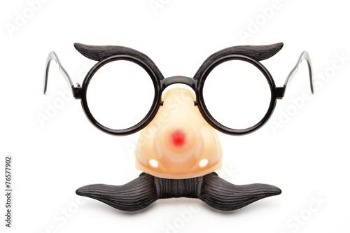 Faschingsnase mit Brille Canvas-taulu