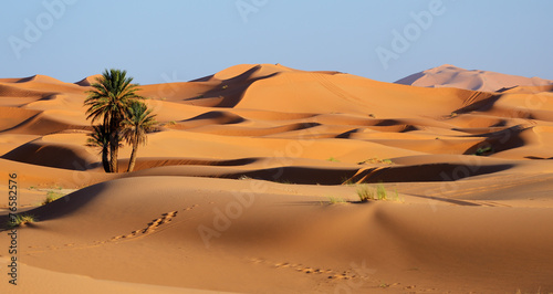 Photo  Morocco. Sand dunes of Sahara desert