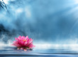spirituality zen in peaceful scenery