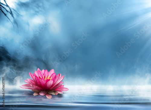 Foto op Aluminium Lotusbloem spirituality zen in peaceful scenery
