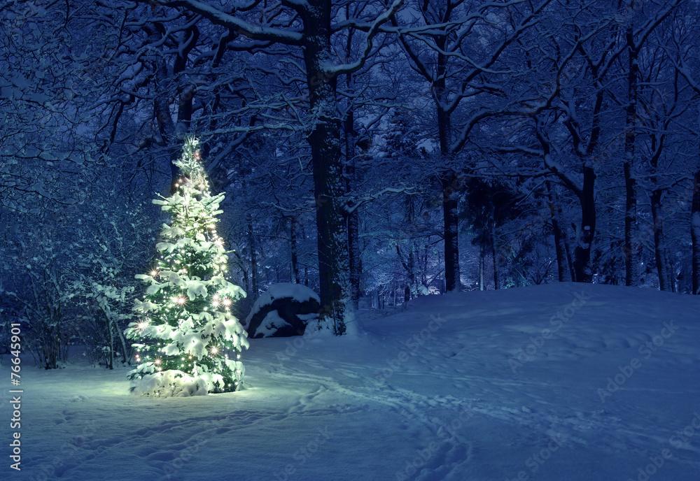 Poster Foto Christmas Tree In Snow Koop Op Europostersnl