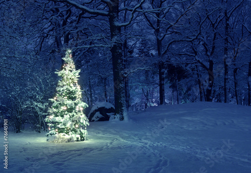 Christmas Tree in Snow Wallpaper Mural