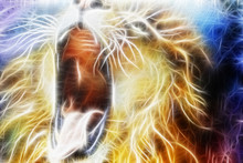 Lion Fractal  Abstract Cosmica...
