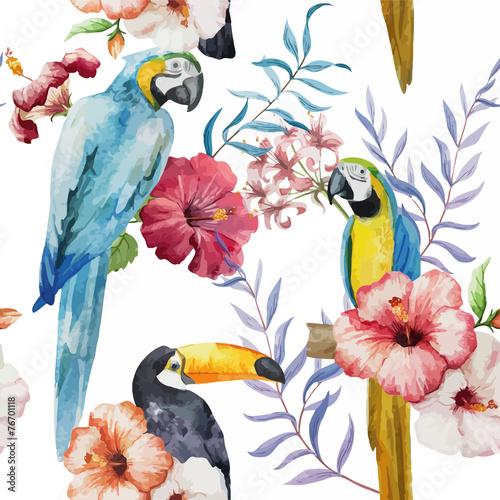 wzor-tukan-papuga-tropikalny-dzungli-tle-przyrody