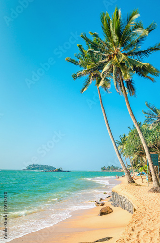 Exotic beach with tall palm trees and azure water, Sri Lanka Wall mural