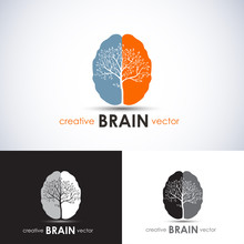 Brain Tree Business Concept Ve...