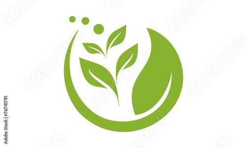 Leaf Logo 4