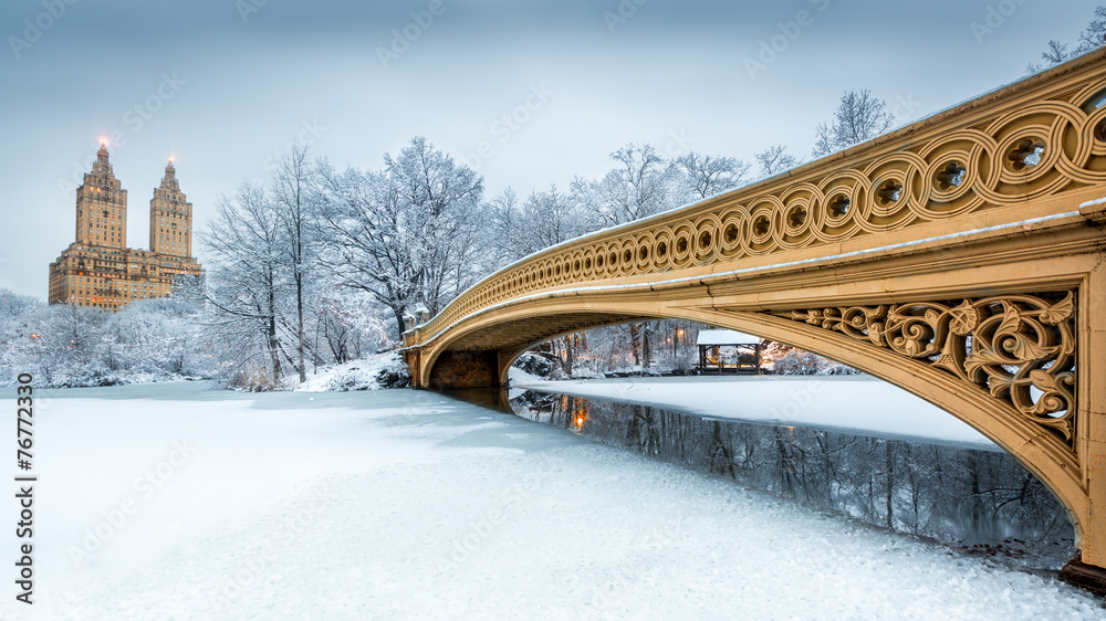 Fototapety, obrazy: Bow Bridge in Central Park, NYC