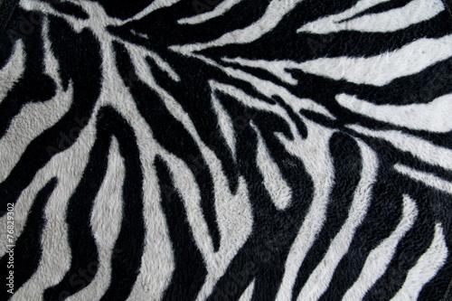 Poster Zebra texture of print fabric stripes zebra for background