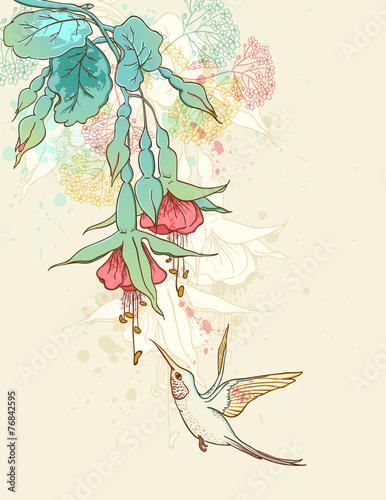 koliber-przy-kwiatku