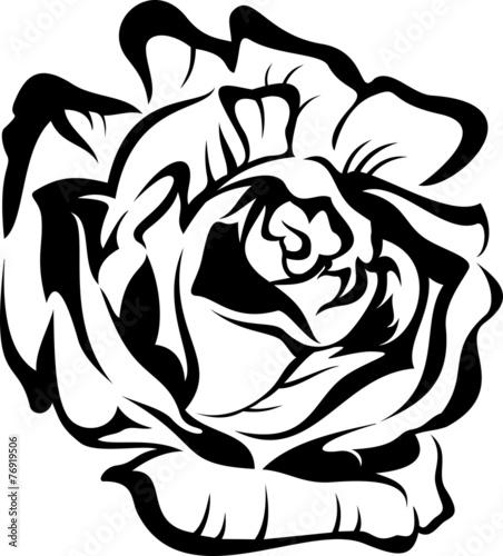 roza-czarna-sylwetka-zarys-ilustracja-tatuaz-wektor