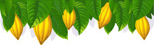 Cocoa Pod And Leaf - The Upper Bar- Vector Illustration