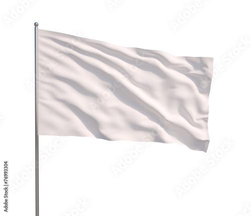 Fotografie, Obraz  Waving white flag