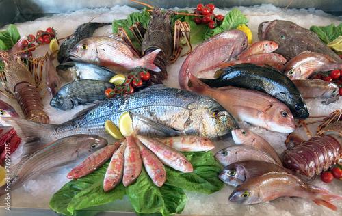 great white sea bream many saltwater fish in the italian restaur Billede på lærred