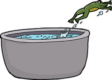 Isolated Frog Escaping Hot Water