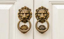 Lion - Door Knocker