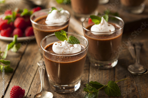 Fotografie, Obraz  Homemade Dark Chocolate Mousse