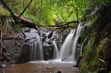 Cascade Yarra Vale 3