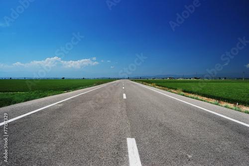 Photo  Route de plaine en été