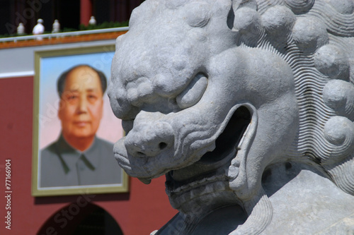 Tela detailed picture mao