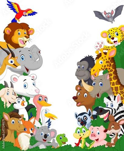 tlo-dzikich-zwierzat