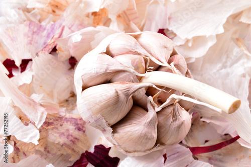 Organic garlic  Natural antibiotic  Healthy food  Natural