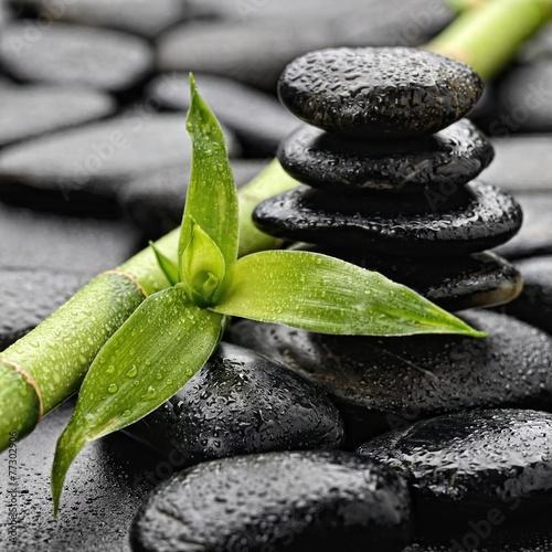 czarne-kamienie-zen-z-zielona-lodyga-bambusa