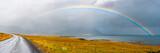 Fototapeta Tęcza - Under the rainbow