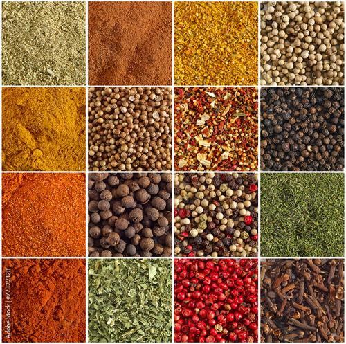 Fotografie, Obraz  various kinds of spices