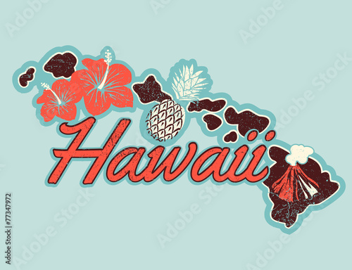 vector-graphic-t-shirt-design-of-hawaii-in