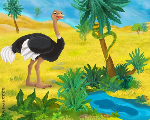 Sceny kreskówki - dzikie zwierzęta Afryki - strusia - ilustracja dla dzieci
