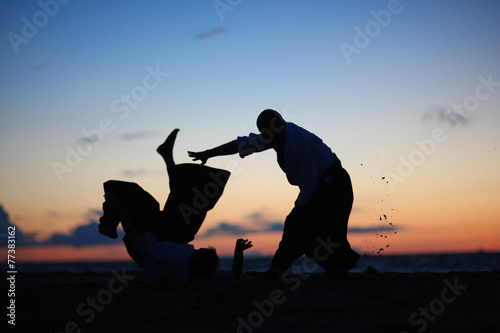 Silhouettes of masters practicing martial arts at sunset