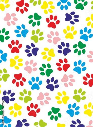 Fotografie, Obraz  colored paws