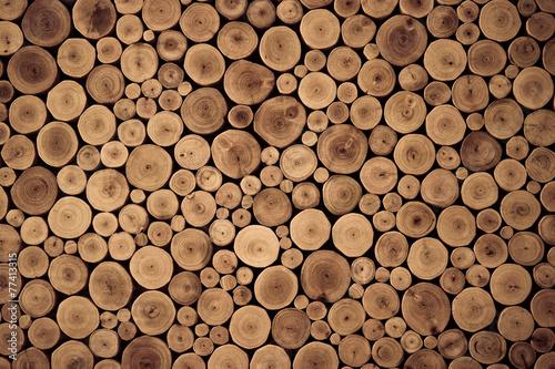 Photographie  wood stump background