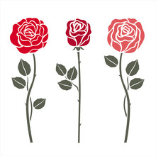 Red Roses On White. Vector