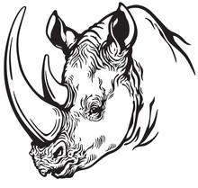 Rhinoceros Head Black White
