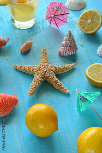 Recess Fitting India Starfish and seashells on blue wood with lemons