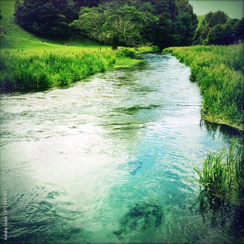 Fotografie, Obraz  Spring water