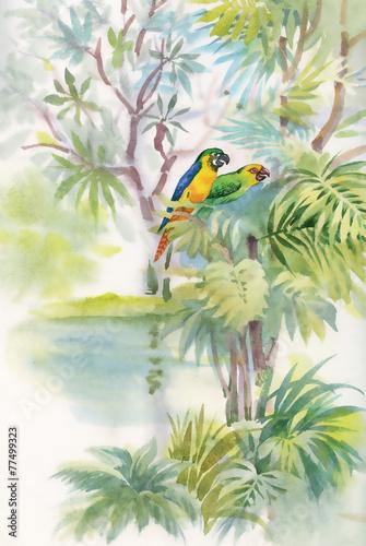 kolorowe-papugi-w-dzungli