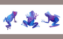 Hand Drawn Watercolor Frogs Set