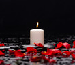 Beautiful rose petals with white candle and therapy stones