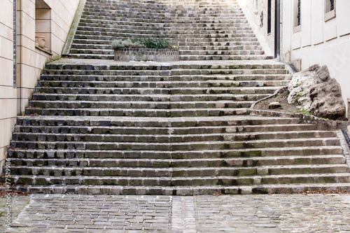 Fotografie, Obraz  A long  stepping stones