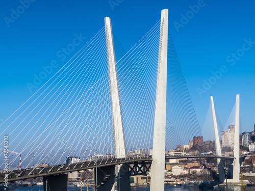 Staande foto Canada Big suspension bridge