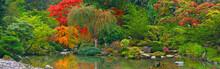 Japanese Garden Panoramic View