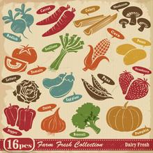 Vintage Farm Fresh Design Elem...