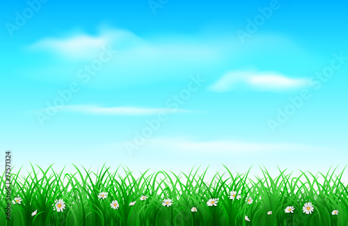 Spoed Foto op Canvas Turkoois Grass background