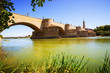 Stone Bridge over Ebro river