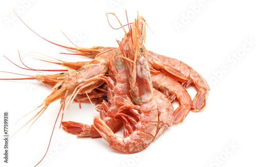 Fotobehang Schaaldieren shrimp